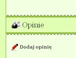 Opinie - zrzut ekranu
