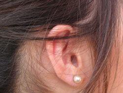 Damskie ucho