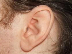 Ucho męskie bez zmian łuszczycowych